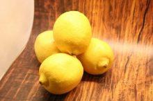 ハムスターにレモンを与えてもOK?
