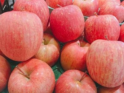 ハムスターはりんごを食べられる?