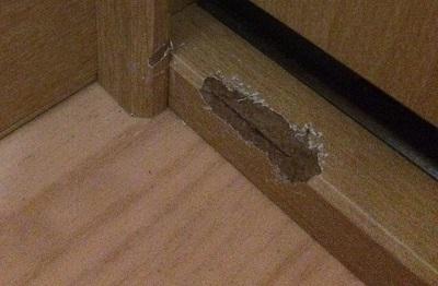 ハムスターに齧られた家具